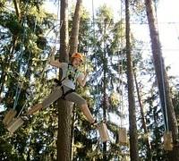 rope-park-649714__180